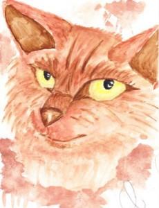 Georgia - cat