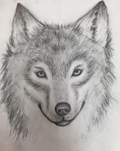 Wolf charcoal